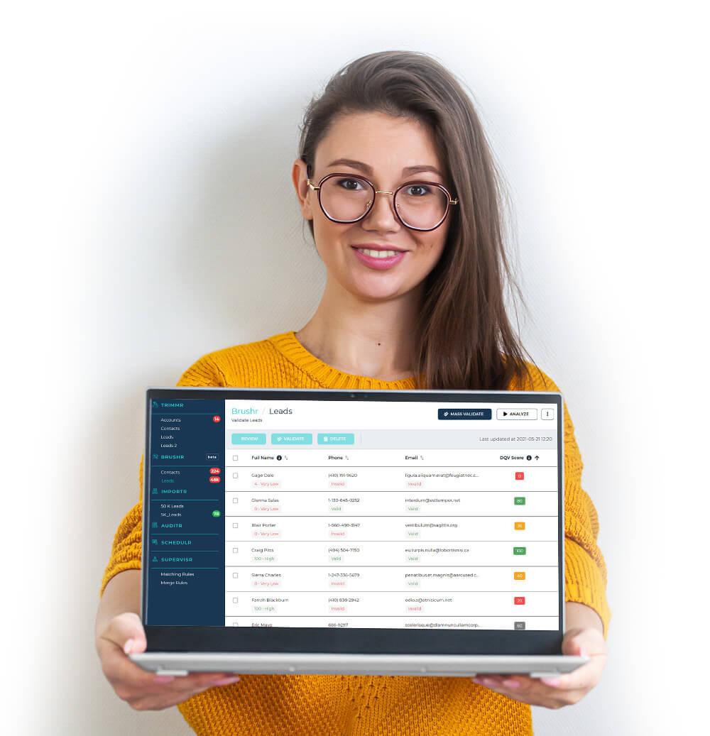 brushr data validation tool
